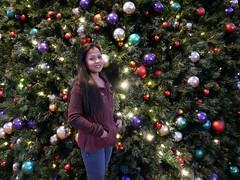 20161210_172303_05_rdl.jpg (radialmonster) Tags: christmastree triangetowncenter sheila radialmonster raleigh northcarolina unitedstates us