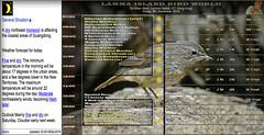 20151209-SuberianRubythroat-(1stwf) (guy.miller) Tags: lamma island birds hk hong kong weather guy miller