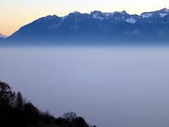 Hidden lake (oobwoodman) Tags: switzerland suisse schweiz lakegeneva lake lman leman genfersee grandvaux haze brume dunst winter hiver alps alpes alpen mountains montagne berge