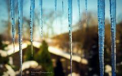 am Fenster (rafischatz... www.rafischatz-photography.de) Tags: germany saxony oremountains window icicles bokeh view pentax k3
