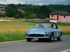 Ferrari 275 GTS (Maurizio Boi) Tags: ferrari 275gts car auto voiture automobile coche old oldtimer classic vintage vecchio antique italy voituresanciennes worldcars