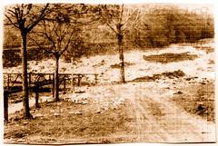 f0189 (Ecomuseo Valsugana | Croxarie) Tags: roncegno ponte