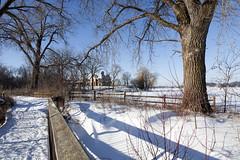 Winter on Lake Minnetonka (Lucie Maru) Tags: winter cold frozen frozenlake ice snow landscape outdoors