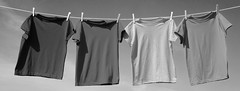 primarios 1b (FotoGráfico Taller) Tags: tshirts shirts cotton clothesline clothes clothing object clothespins pins rope objects textiles red yellow green blue sky background copyspace addtext graphic hanging colors bright colorful pretty casual fashion unitedstatesofamerica