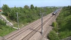 French High Speed - TGV Duplex in the direction of Paris. (Franky De Witte - Ferroequinologist) Tags: de eisenbahn railway estrada chemin fer spoorwegen ferrocarril ferro ferrovia