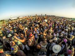 Colour Festival 2015 (David Parody) Tags: david m parody 2015
