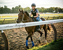 (EASY GOER) Tags: summer horses horse ny newyork sports beauty race canon athletics track saratoga competition upstate running racing course event 5d ponies athletes tradition races sporting spa thoroughbred equine exciting thoroughbreds markiii