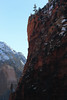 (eflon) Tags: trees cliff mountain snow utah ut canyon cliffs zion np