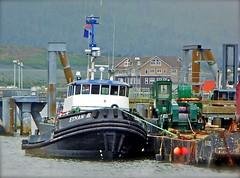 Tug Ethan B (chartan) Tags: alaska tugboat tug barge ketchikan workingboat