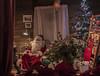 NAVIDAD 2016  A CORUÑA-2 (lourdestorreira) Tags: navidad acoruña papánoel lucesnavideñas iluminacióndenavidad esfera noche