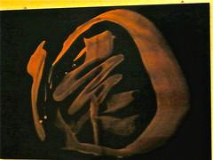 Schriftzeichen (web.werkraum) Tags: asiatischesmuseum berlindahlem letzterblick ks 2016 digitalephotographie art architektur berlin museumsarchitektur karinsakrowski berlinerkünstlerin bildfindung color collageconcept deutschland dasdasein asien japan schrift typo dokumentation documentation eingang germany galerie light licht museum nahaufnahme tagesnotiz tür webwerkraum wegzeichen zeichen schriftzeichen