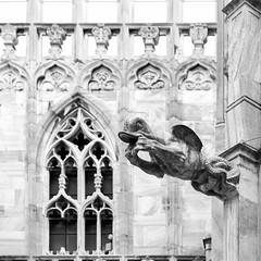 gargoyles in monochrome (Reflexionist) Tags: duomo milano duomodimilano chiesa cattedrale tetto terrazza terrazzadelduomo architettura scultura guglie guglia pinnacolo pinnacoli archirampanti gargoyles statue biancoenero monocromo allaperto prospettiva vistaprospettica venerandafabbricadelduomo gotico rinascimento barocco milan milancathedral church cathedral roof terrace thedometerrace architecture sculpture spiers spire pinnacle pinnacles flyingbuttresses statues blackandwhite monochrome outdoors perspective ripeoldfactoryofthecathedral gothic renaissance baroque nikonitalia d750 nikond750 geometric geometrico reflexionist