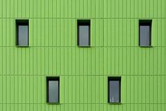 Five windows in a green wall (Jan van der Wolf) Tags: map16545v windows ramen gevel facade architecture architectuur patroon pattern green groen lines lijnen lijnenspel monochrome monochroom uithof utrecht five vijf geometry symmetry composition compositie
