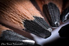 Macro crayon - Pencil macro (Franck Baltenweck Photographie) Tags: kenko nikon nikkor d7100 macro bague allonges 50mm