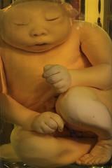 IMG_2231 (anthrax013) Tags: saint petersburg kunstkamera anatomy science medicine dead baby death necro necrophilia corpse abortion formalin