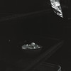 空蝉ひそめて (萬名 游鯏(ヨロズナ) / Yorozuna) Tags: 下田 伊豆 静岡県 shimoda izu shizuoka japan 伊豆急下田 flexaretvi flexaretautomatvi fujifilmneopan100acros filmshot filmscanning フィルム写真 フィルムスキャニング フィルムスキャン アナログ写真 analogphotography モノクロ 白黒 monochrome blackandwhite 卵 egg 卵の殻 eggshell