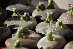 かえるさん (March Hare1145) Tags: 日本 japan つくば山 山 mountain frog 蛙 かえる