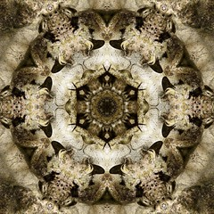 Kaleido Abstract 1588 (Lostash) Tags: art edited abstract patterns symmetry shapes kaleidoscopes