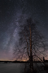 Lonely tree below the milkyway (Haapih) Tags: milkyway snow winter stars astophotography kiuruvesi finland suomi countryside agriculture winterwonderland landscape