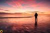 Alone (t_dixon86) Tags: beech northumberland outdoors sunrise selfie