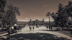 Seville b/w (Frigo78) Tags: siviglia street spagna spain seville sevilla bw biancoenero viaggio travel