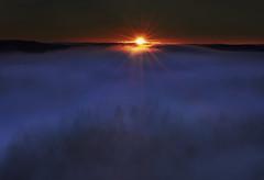 Baby, come light me up (MilaMai) Tags: fog mist forest sunrise sunrays sunbeams rays shiningthrough trees valley finland suomi milamai landscape redsky photography blue risingsun highangle redandblue
