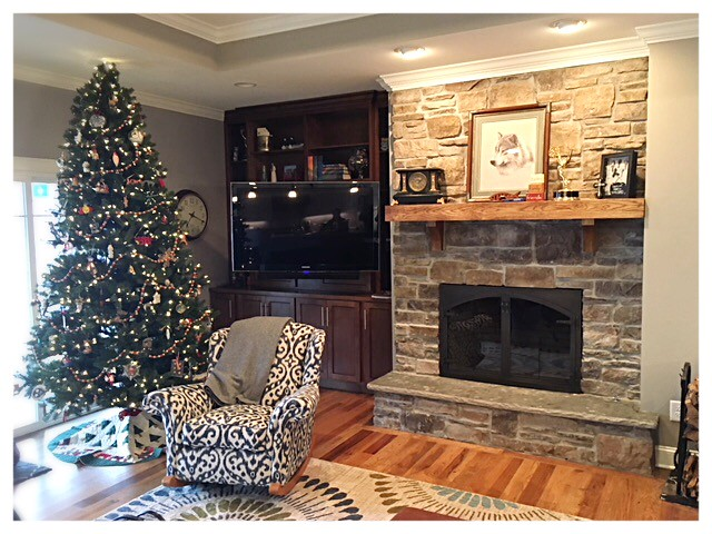 Design Specialties Hammered Edge Fireplace Doors. Chattanooga, Tn.