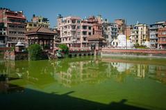 Bassin devant le temple (seb.grd) Tags: nepal vacances np patan npal centralregion