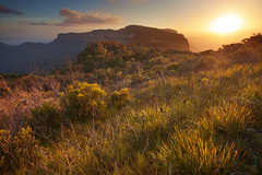 Narrowneck Perspective || BLUE MOUNTAINS || AUSTRALIA (rhyspope) Tags: new sunset cliff pope mountains tree grass wales sunrise canon neck landscape view south sigma australia valley vista aussie shrub 1020 narrow rhys katoomba megalong 500d rhyspope