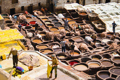 150607121433 (a krambrich) Tags: leather work morocco fez medina marokko fes tannery fs chouara