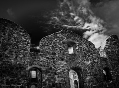 Brahehus (instagram: ismoalajarvi) Tags: bw black castle sweden lowkey mustavalko vttern brahehus rauniot