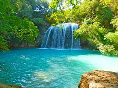 Dans la fort (apolloniacyclade) Tags: blue trees panorama nature water beautiful river landscape waterfall eau quiet turquoise rivire bleu arbres beaut paysage cascade var tranquille