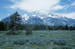 Tetons, Grand Teton National Park (dungan.robert) Tags: 35mm slide wyoming nikonn80 grandtetonnationalpark iso160 dwaynesphoto copyrightrobertedungan2015 fppretrochrome