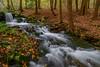 State Game Lands (clare j kaczmarek) Tags: waterfalls pastategamelands42 autumn mountainstreams laurelhighlands patnc forests pennsylvania