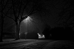 On the road at night (alain.duchateau) Tags: ifttt 500px lights night photography nightscape tree trees shadows shadow fog foggy street mist winter long exposure a take by low temperature on road http500pxcomphoto190354449 december 29 2016 0345pm