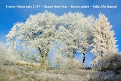 Frohes Neues Jahr 2017 - Happy New Year - Feliz Año Nuevo! (Kat-i) Tags: bonneannée feliceannonuovo felizañonuevo neujahrswünsche 2017 winter natur nature bäume trees raureif hoarfrost himmel sky blau blue nikon1v1 kati katharina