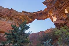 Devil's bridge (rjonsen) Tags: devils bridge sedona rock natural arizona formation tree top sky blue red