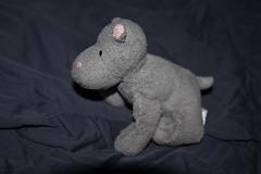 IMG_7419 (armadil) Tags: freecycle stuffedtoy toy hippo stuffedhippo