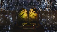 La Rotonte - Lions (KristHelheim) Tags: aixenprovence rotonte fontaine décorationsnoël france bouchesdurhone