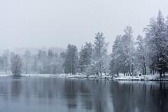 Snowy landscape (Henrik Axelsson) Tags: bergslagen foliage forest lake landsbygd ludvika snow sjö skog sky snowfall snö snöfall trees träd vatten vinter väsman water winter dalarnaslän sverige se
