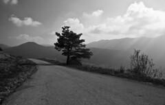 Road to Svetište (roksoslav) Tags: velebit krasno 2008 svetište nikon d80 sigma18125mm