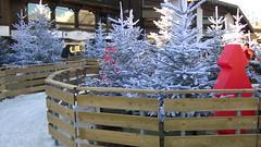 combloux (fionadodsworth) Tags: combloux christmas