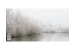 sweet winter (Emmanuel DEPARIS) Tags: hortillonages amiens somme haut de france fleuve brouillard fog nord givre gel etang marais picardie emmanuel deparis nikon d500
