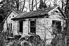 Abandoned (Pejasar) Tags: abandoned house woods blackandwhite bw oldtires trees brush backwoods oregon