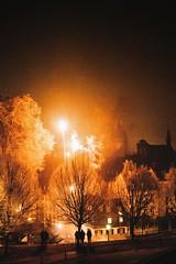 goodbye hello (lina zelonka) Tags: mainz germany silvester linazelonka newyearseve firework feuerwerk vertical night nacht mayence rlp rhinelandpalatinate rheinlandpfalz deutschland europe europa silhouettes nikond7100 18105mm