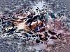 Fractales pour pierres sable et neige (JMVerco) Tags: fractales abstrait abstract astratto création creative creazione photomanipulation digitalart