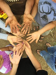 "many hands • <a style=""font-size:0.8em;"" href=""http://www.flickr.com/photos/75400798@N04/32262182762/"" target=""_blank"">View on Flickr</a>"
