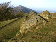 Winter Day on the Malverns. (jenichesney57) Tags: hills malverns worcestershire granite view tree grass path walk beacon wychecutting severnvalley panasonic dmc tz60