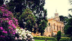 A Church...and some Rhododendrons (MickyFlick) Tags: uk flowers england history europe unitedkingdom olympus architectural historical worcestershire rhododendrons greatwitley stmichaelandallangelschurch baroquechurch summertimeandthelivingiseasy epl1 mickyflick