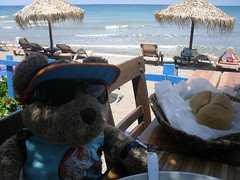 """Finished! Can I go on the beach now?"" (pefkosmad) Tags: bear vacation holiday ted beach lunch teddy hellas fluffy greece meal taverna greekislands griechenland rodos rhodes greeksalad dodecanese portoantico tedricstudmuffin tedrhodes2015"